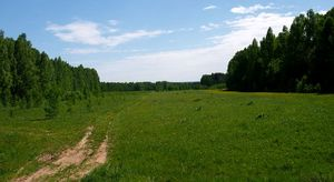 Way to Lipovka